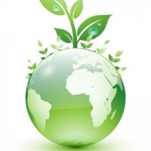 οικολογικά-καθαριστικά-στο-σπίτι-800x800